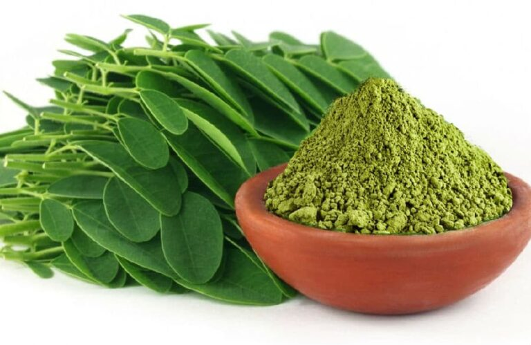 moringa come assumerla e proprietà