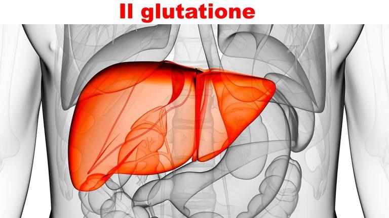 Scopri il glutatione perossidasi